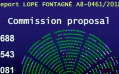 Informe del Parlamento Europeo sobre la propuesta del FSE+: un paso adelante para la inclusión de la población gitana