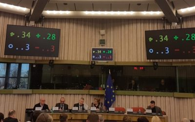 European Parliament REGI Committee calls for specific mention to Roma in post-2020 ERDF and Cohesion Fund Regulation