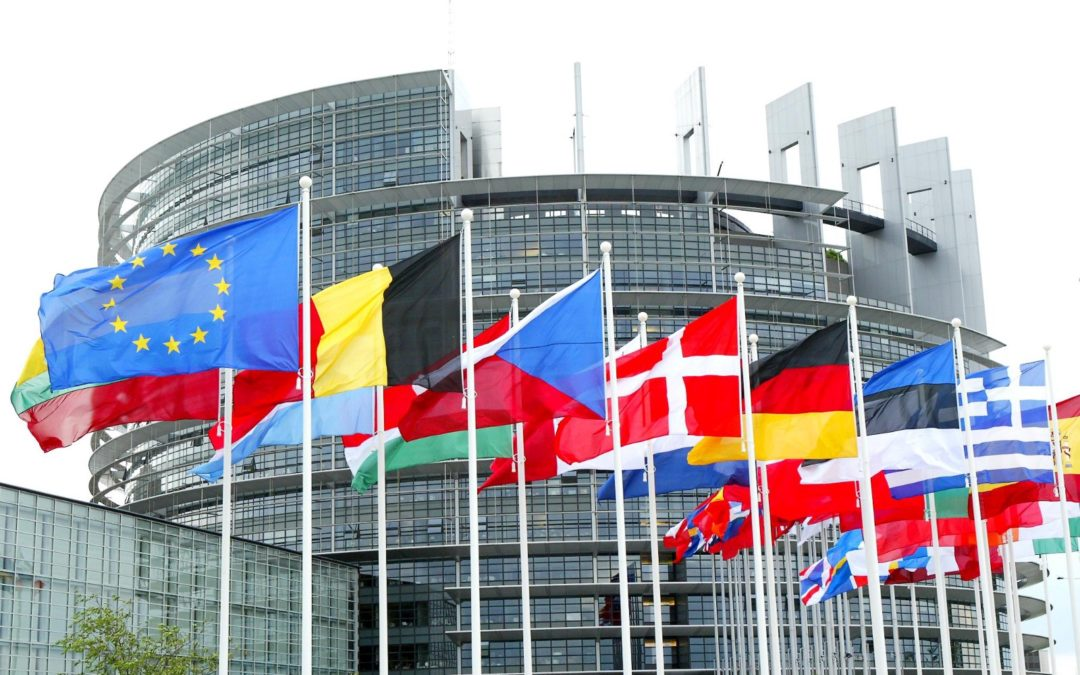 European Parliament's call to strengthen National Roma Inclusion Strategies and step up the fight against anti-gypsyism