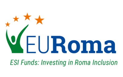 29-30 June: Next EURoma online Management Committee meeting